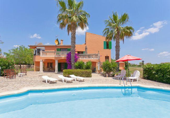 Villa en Santa Maria del cami - Villa Santa Maria